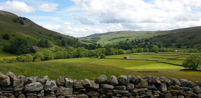 View of Upper Swaledale