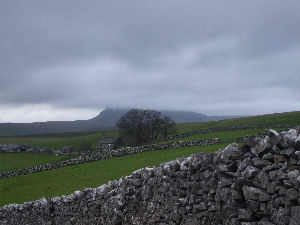Drystone wall on moors above Stainforth in the Yorkshire Dales